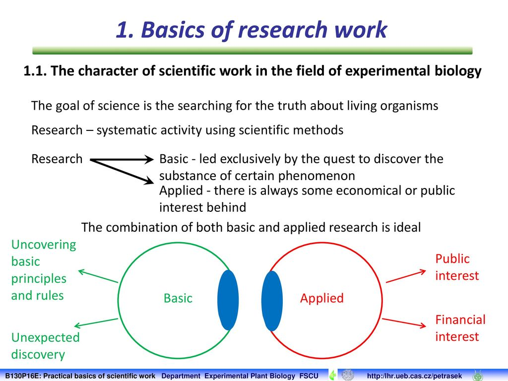 Scientific work by the rules: requirements for the abstract 93