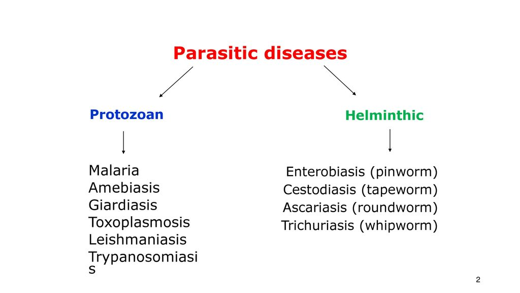 toxoplasmosis giardiasis