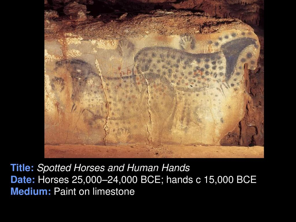 spotted horses and human hands