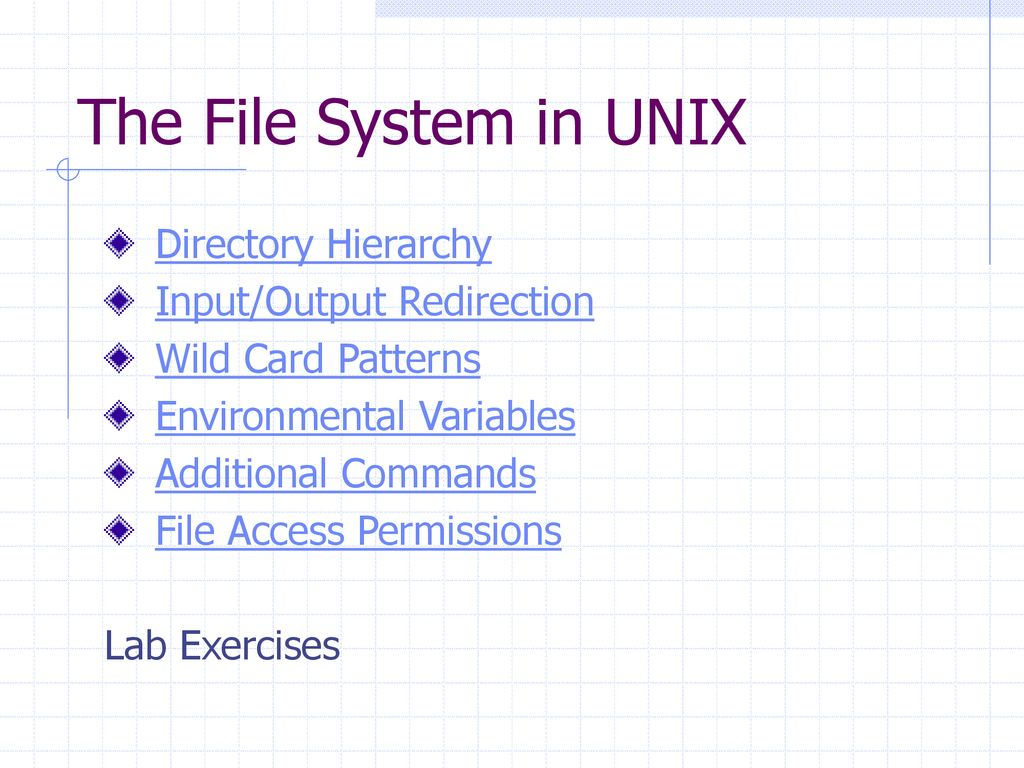 Unix Shell Scripting Introduction To Unix The File System In Unix