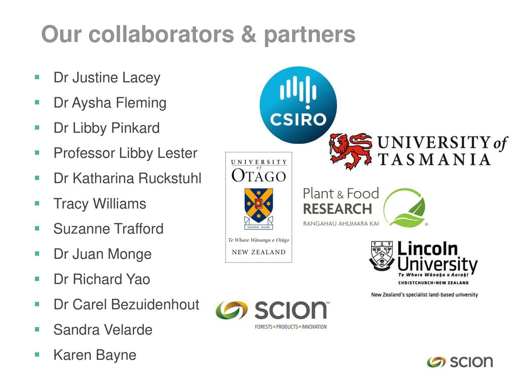Our collaborators & partners