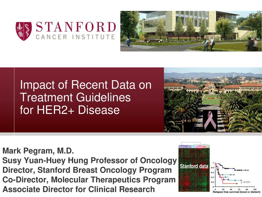Impact of Recent Data on Treatment Guidelines for HER2+