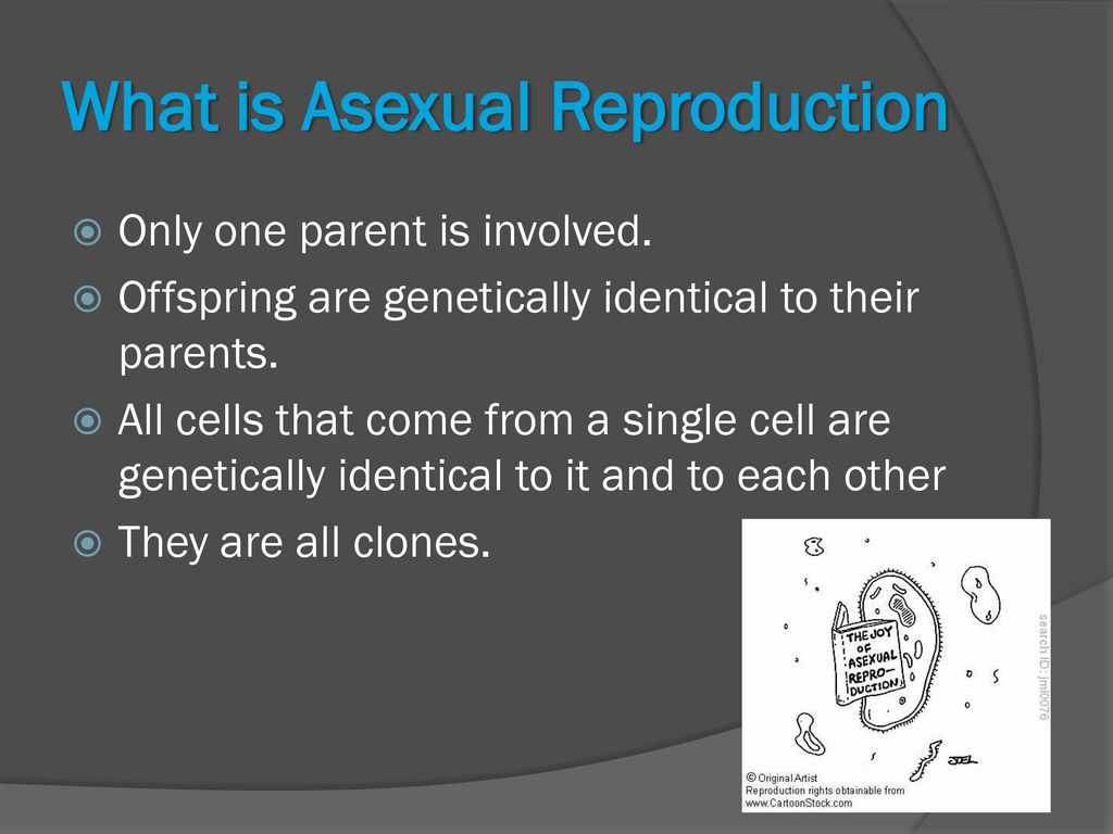 How to come out to your parents as asexual propagation