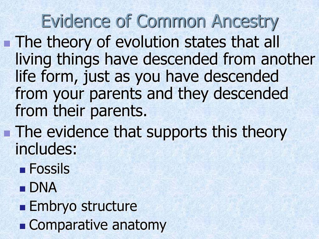 Evidence Of Evolution Comparative Anatomy Gallery Human Anatomy