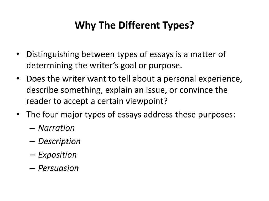 College essay review help