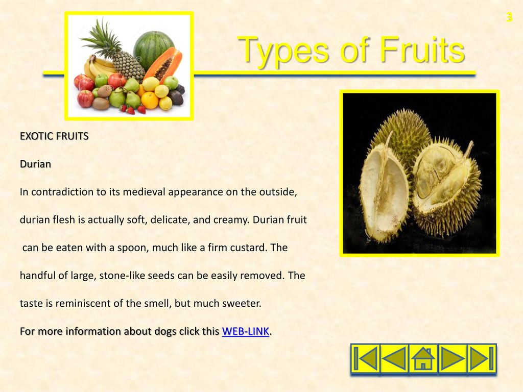 Types of Fruits Domestic Fruits Water Melon Papaya Exotic Fruits