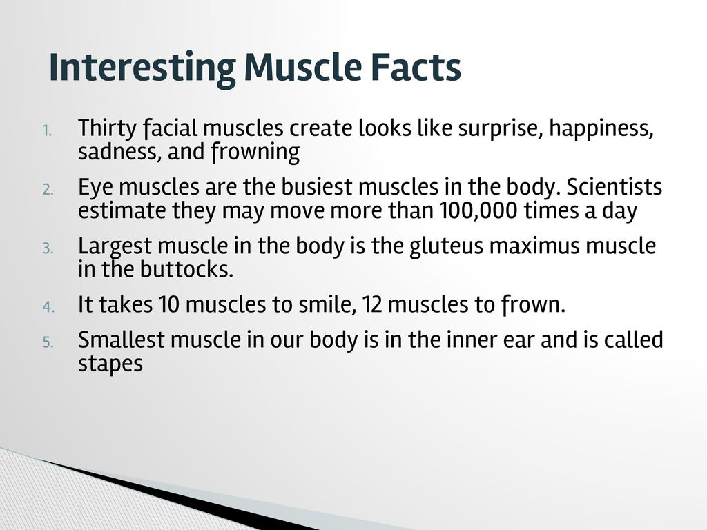 10 facts about muscles