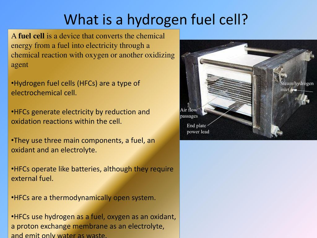 Hydrogen Fuel Cells Ppt Download Cell Diagram Department Of Chemical What Is A