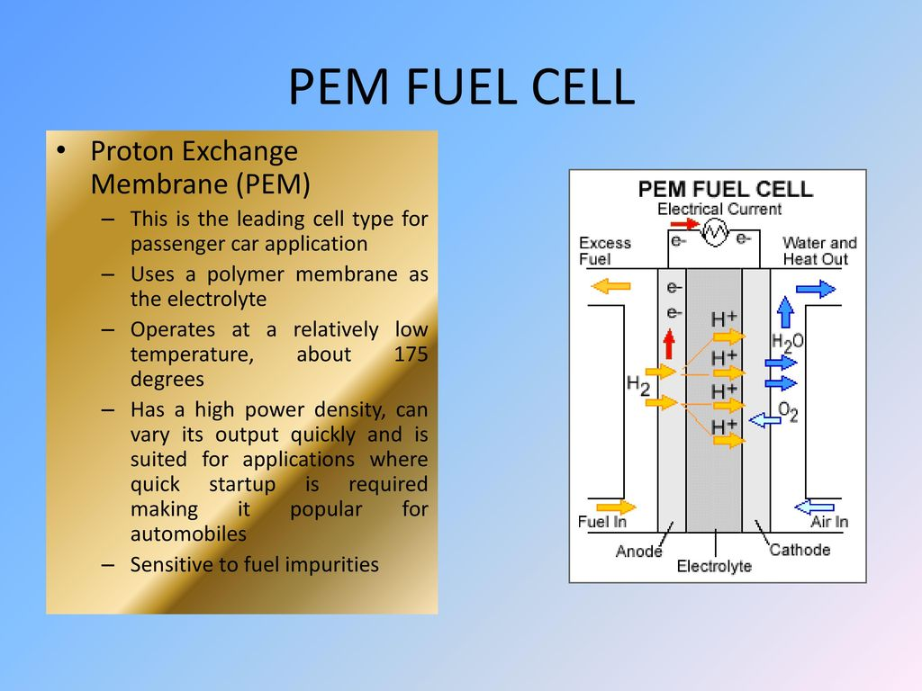 Hydrogen Fuel Cells Ppt Download Cell Diagram Department Of Chemical Pem Proton Exchange Membrane