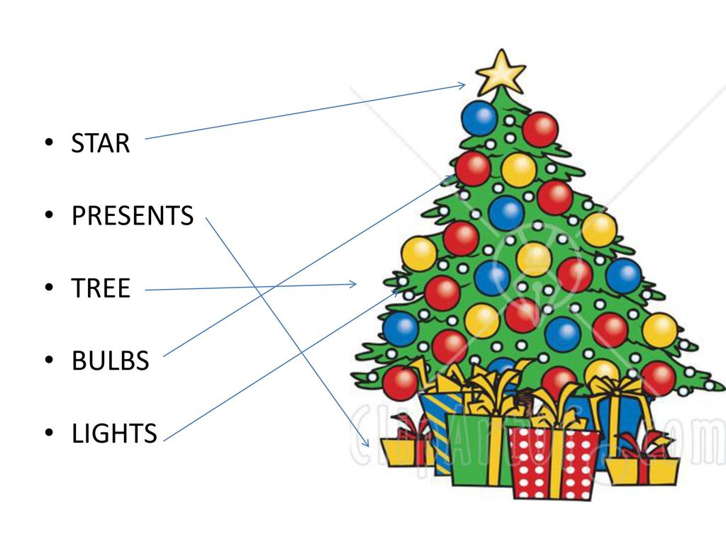 Christmas Tree Counting - ppt download
