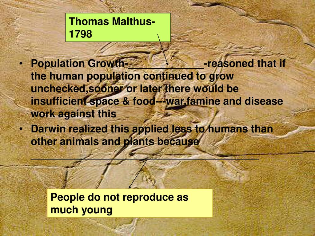 darwin realized that the economist malthuss theory of population control