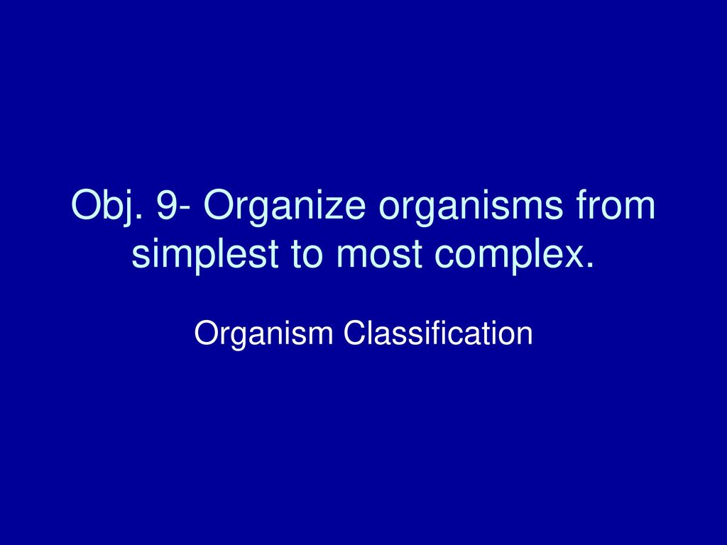Obj 9 Organize Organisms From Simplest To Most Complex