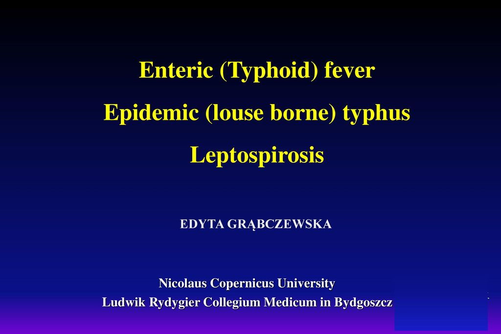 How is louse borne typhus transmitted sexual disease