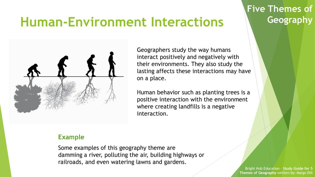 positive examples of human environment interaction
