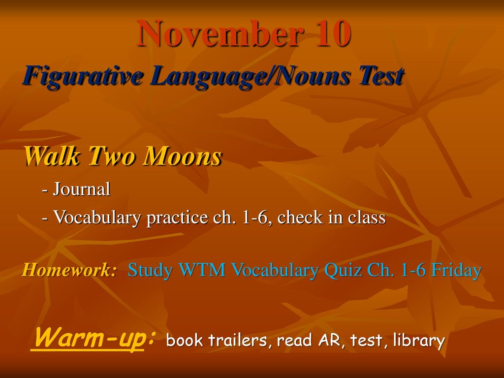 Worksheets Walk Two Moons Worksheets november 7 walk two moons figurative language ppt download 10 languagenouns test moons