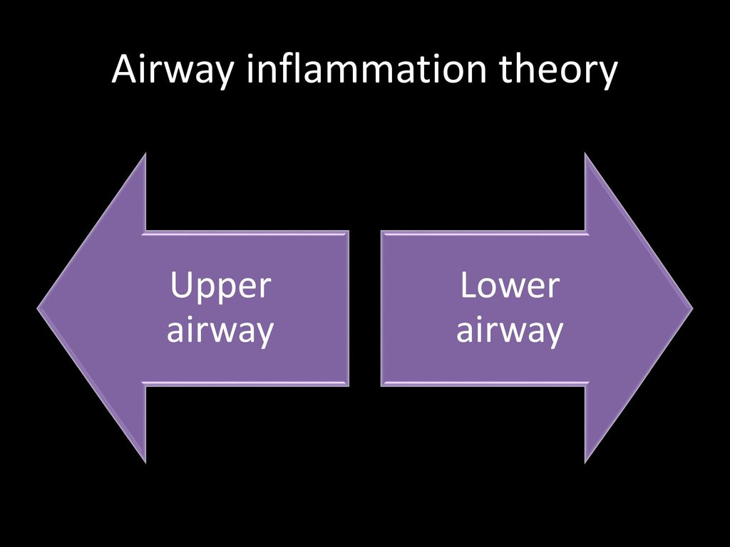 Airway inflammation theory