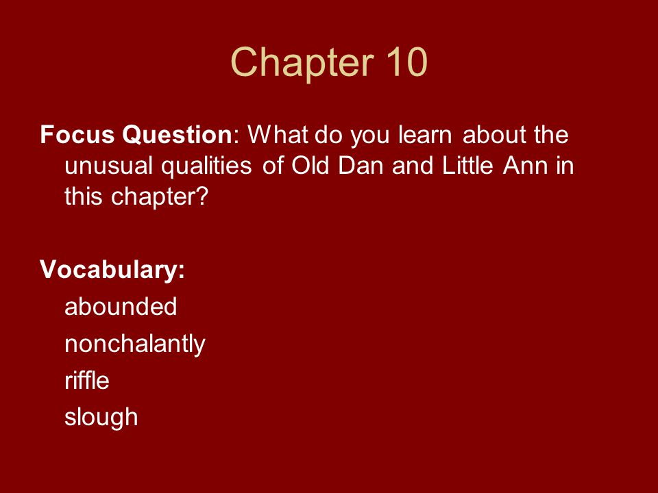 Chapter 10 Focus Question: What do you learn about the unusual qualities of Old Dan and Little Ann in this chapter