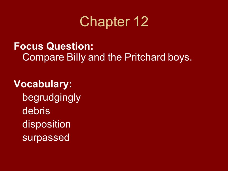 Chapter 12 Focus Question: Compare Billy and the Pritchard boys.