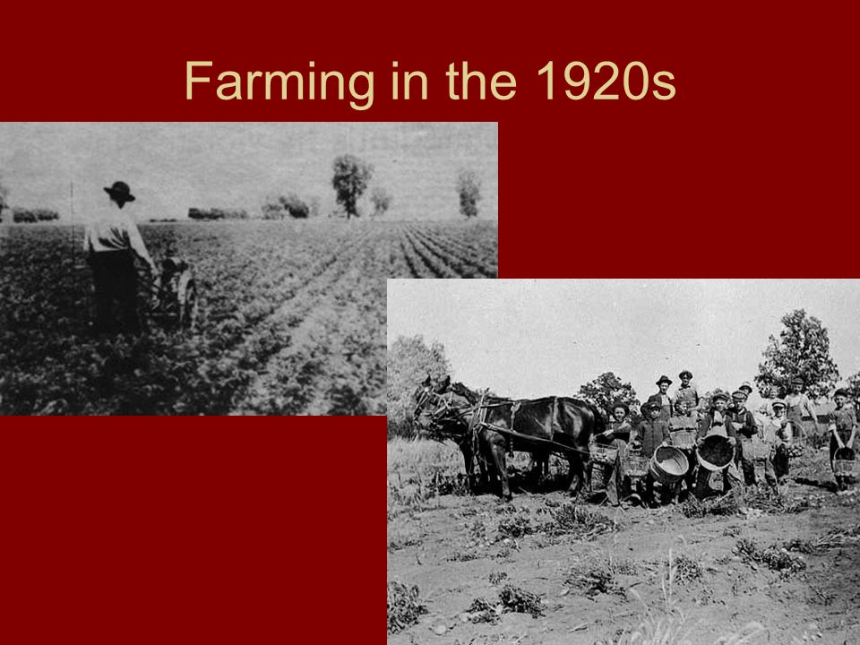 Farming in the 1920s