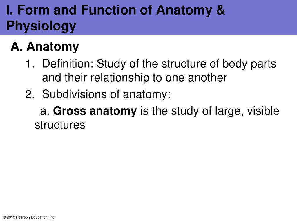 Bell Ringer 1.1 Define Anatomy 1.2 Define Physiology 1.3 Describe ...
