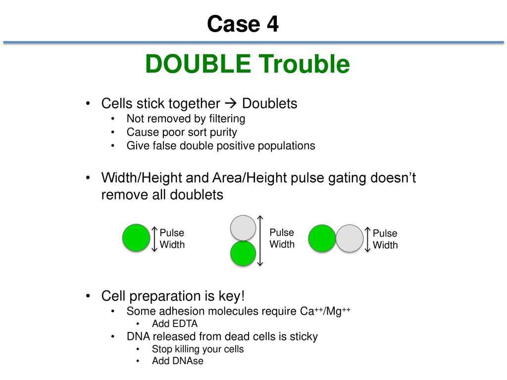 DOUBLE Trouble Case 4 Cells stick together  Doublets