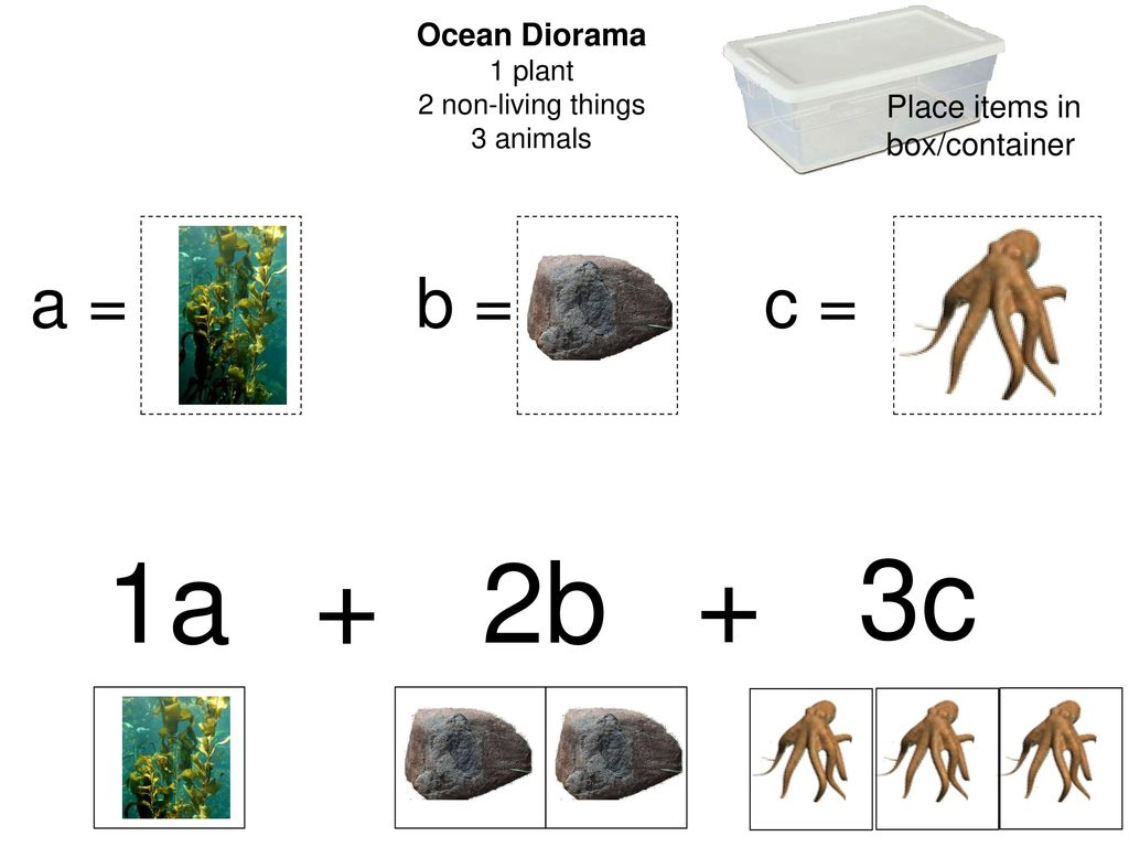 """20,000 Leagues Under the Sea"""" Polynomial Math - ppt download"""