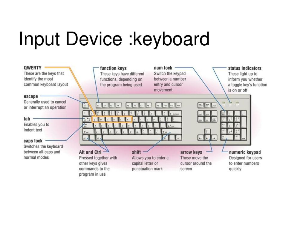 Input Device :keyboard Types of key switch Components of Keyboard ...