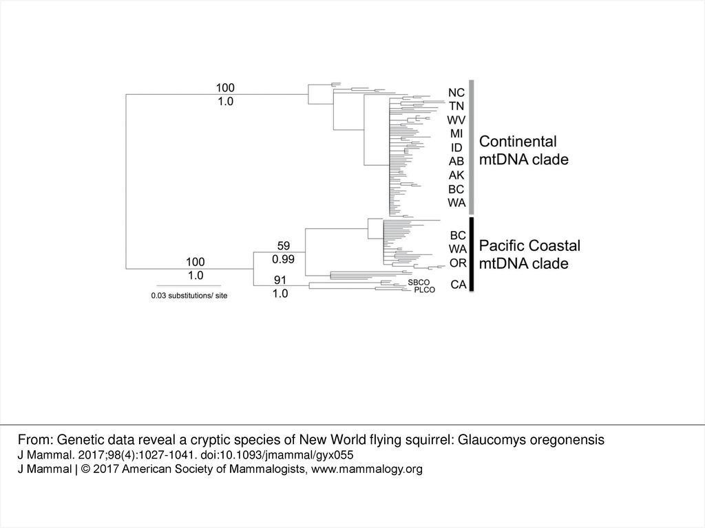 Fig  1  —Midpoint-rooted Bayesian phylogram of the 128