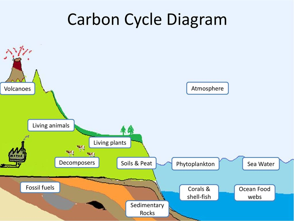 Volcano carbon cycle