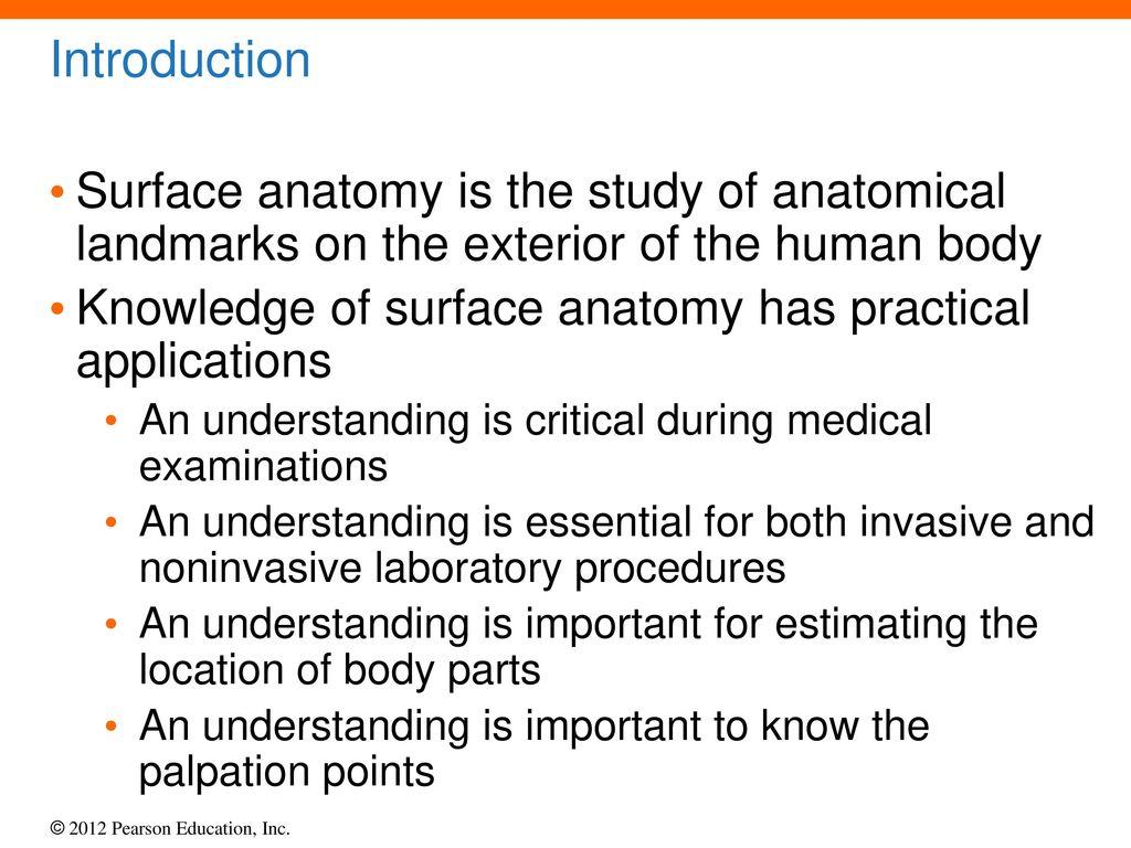 Fein Surface Anatomy Landmarks Human Body Bilder Anatomie Von