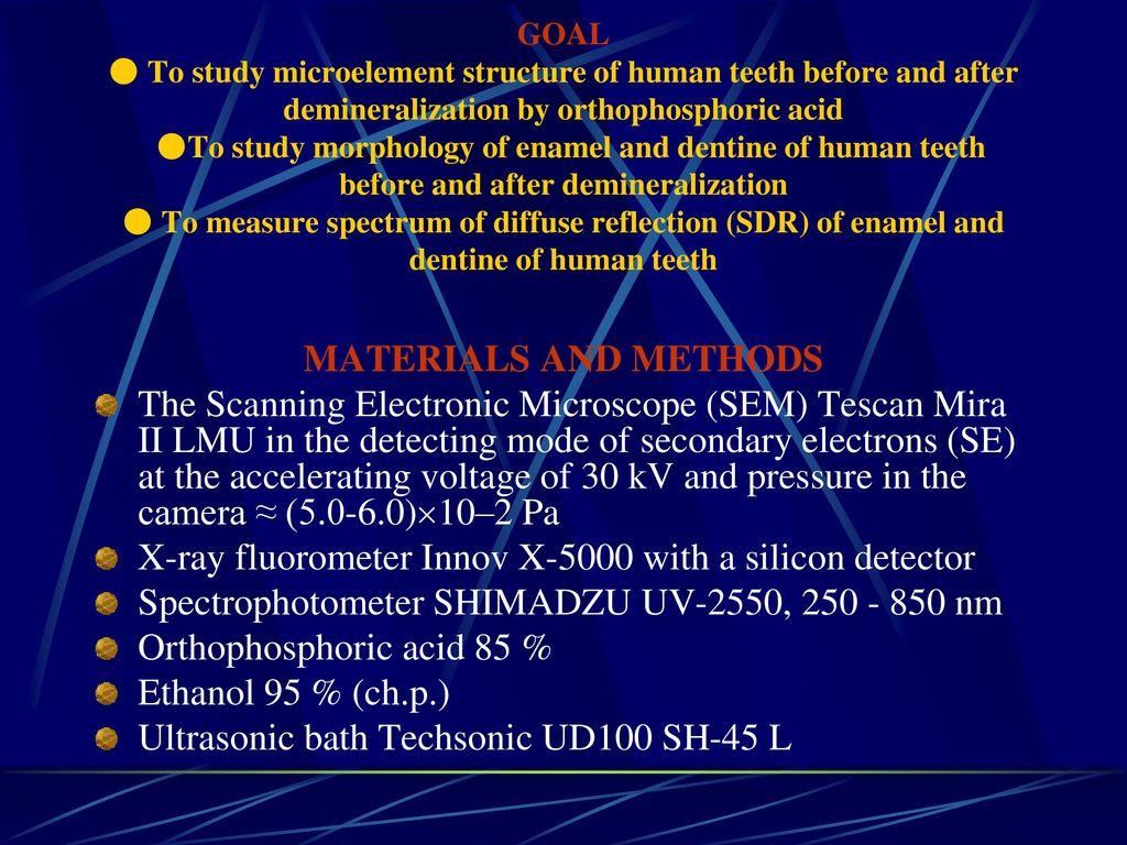 human teeth composition