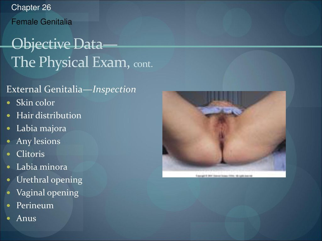 Guidelines for performing breast and pelvic examinations