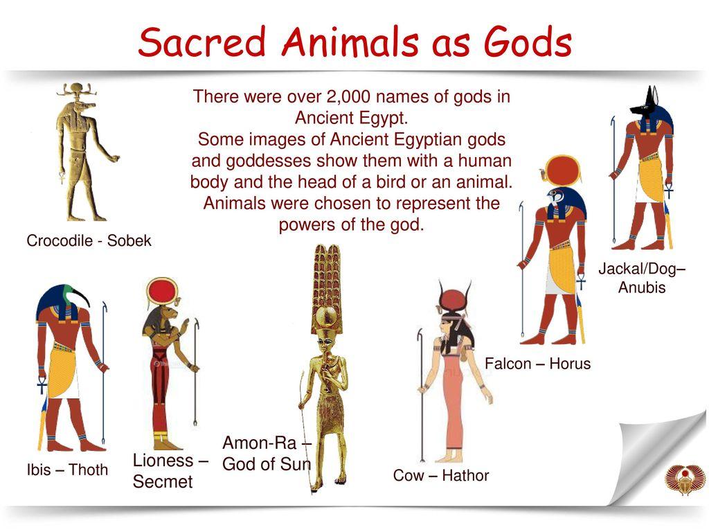 V Gatalska Temples & gods in Ancient Egypt  - ppt download