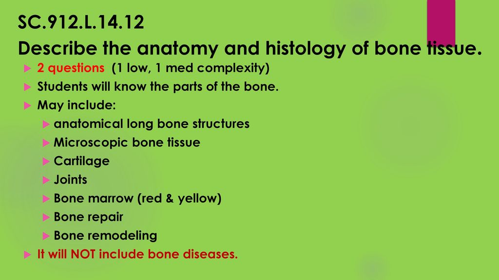 Anatomy & Phys EOC Review! - ppt download