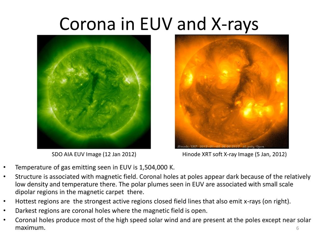 Corona in EUV and X-rays
