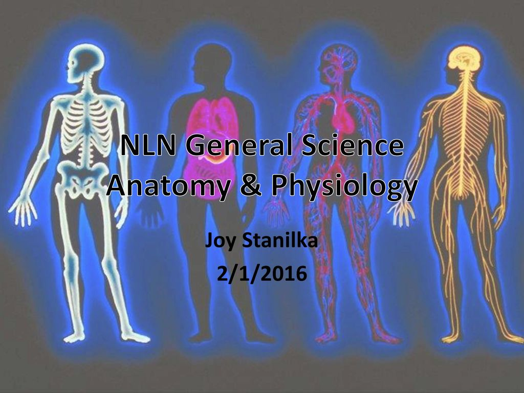 NLN General Science Anatomy & Physiology - ppt download