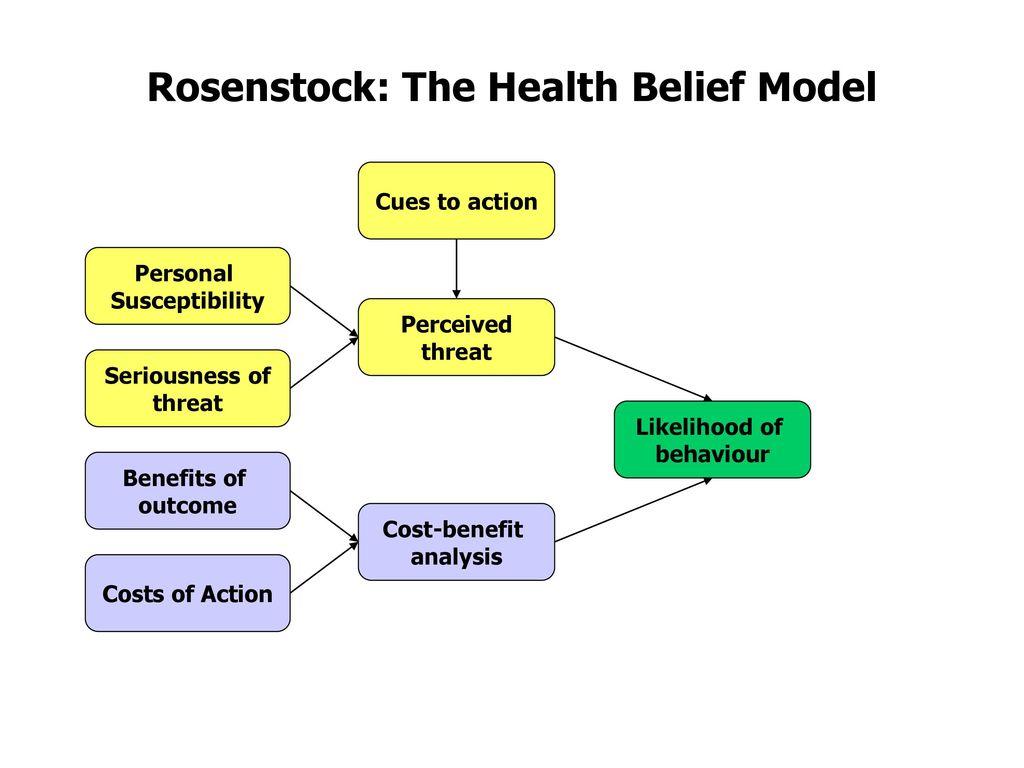 Theories Of Health Illness Behaviour Ppt Download
