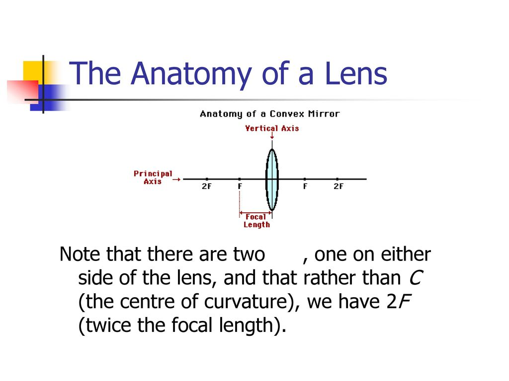 Lenses and Ray Diagrams - ppt download