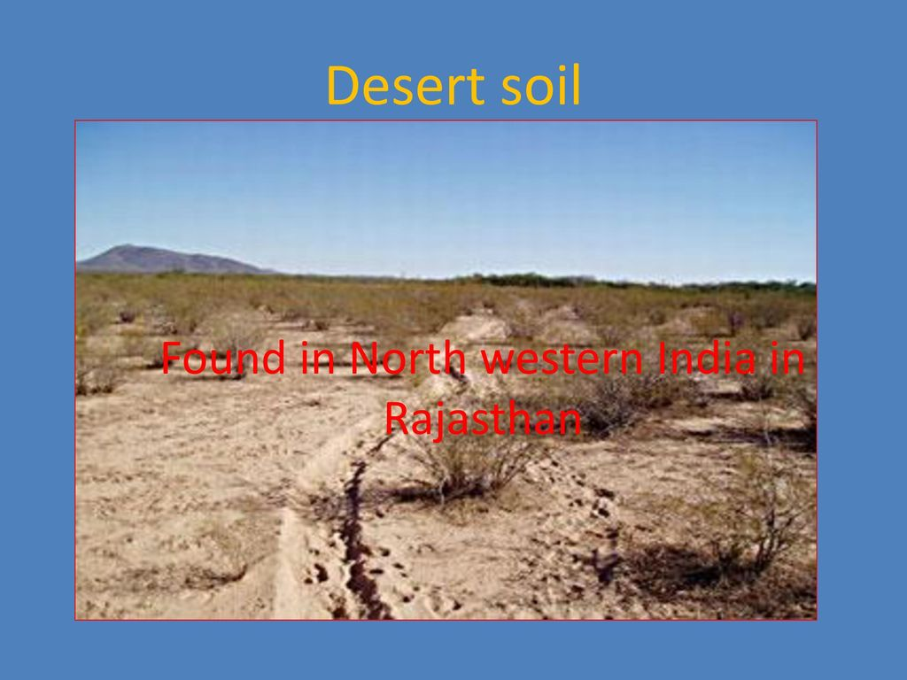 desert soil in india