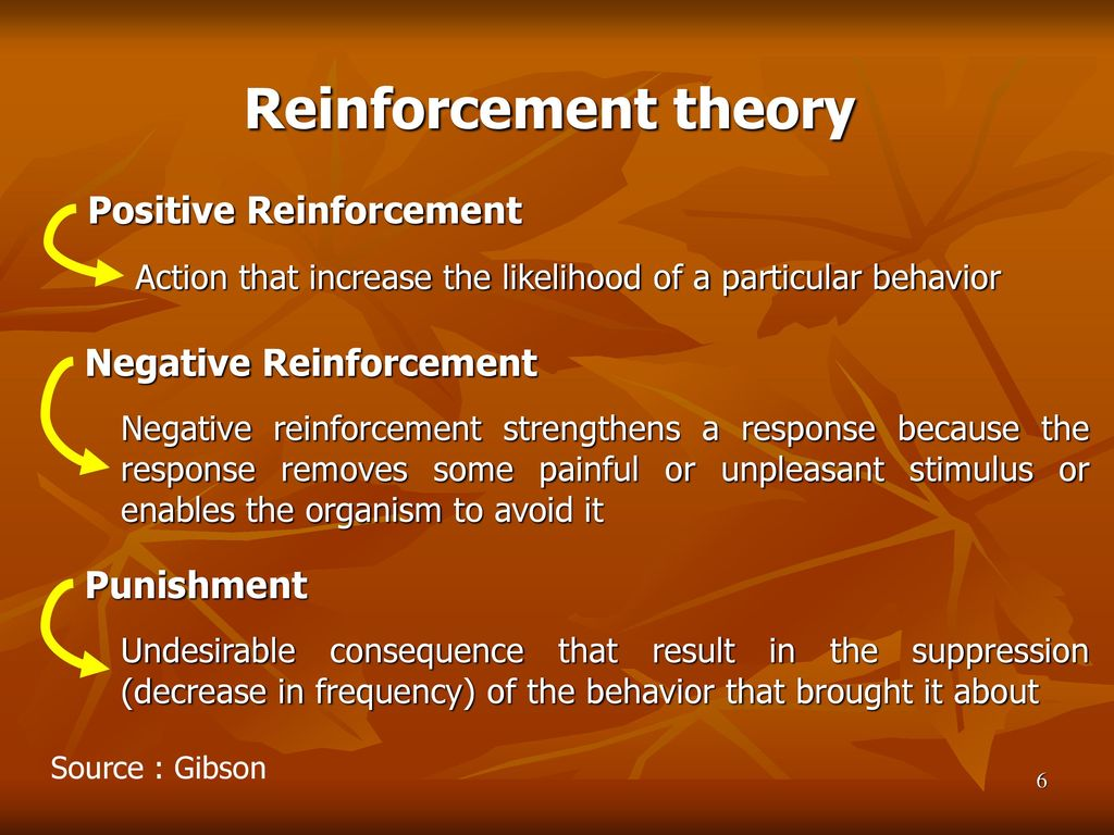 positive and negative reinforcement theory