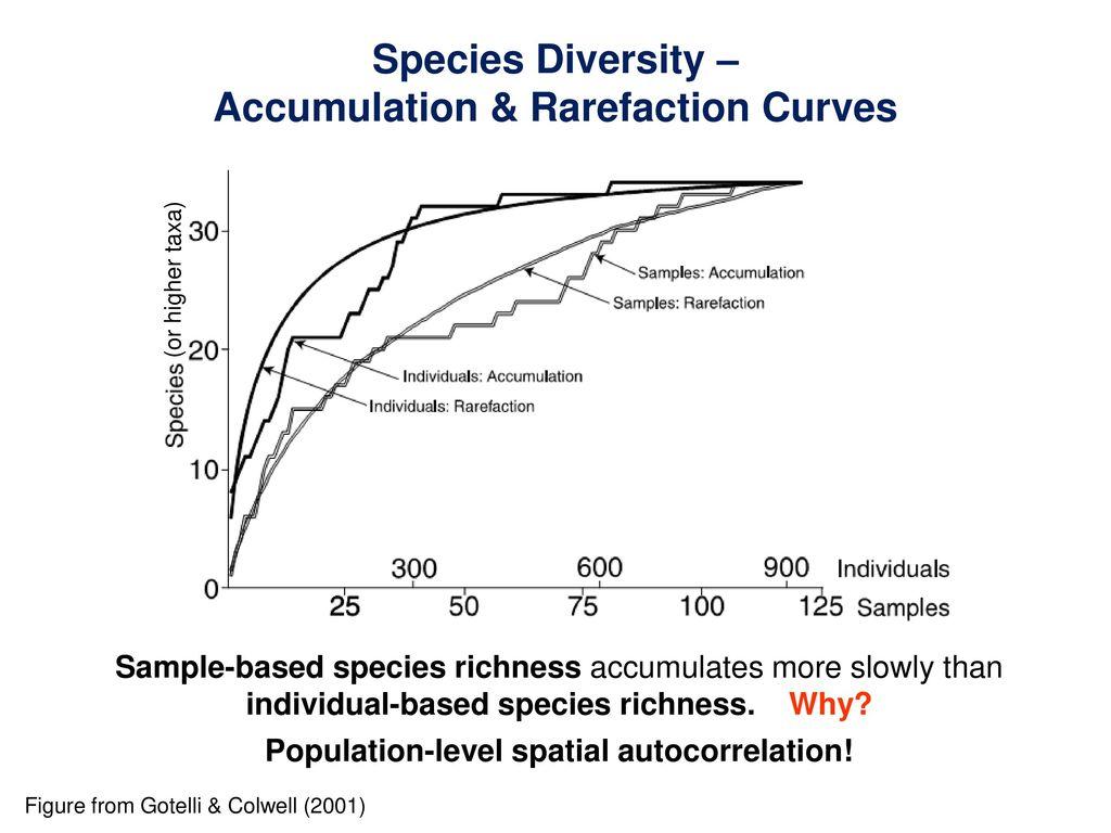 Community-Level Patterns: Species Richness & Diversity - ppt