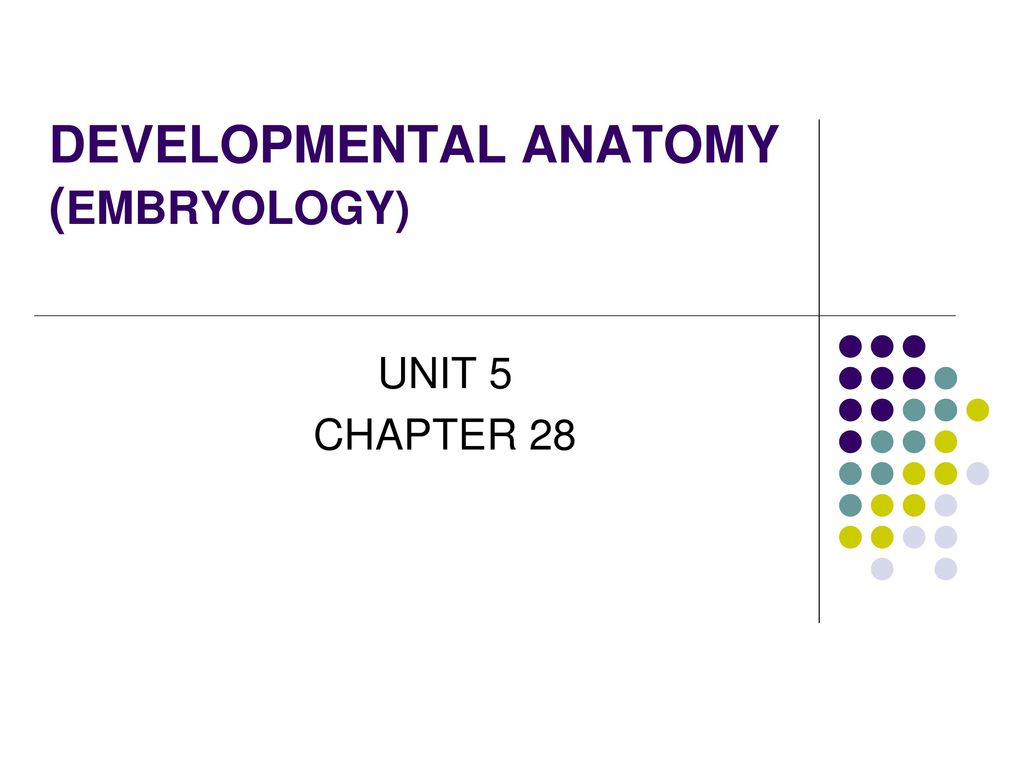 Chapter 1 Organization of human body. - ppt download