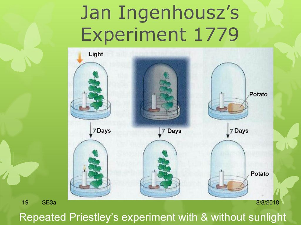 Jan Ingenhousz Experiment >> Chapter 4 Energy And Metabolism Ppt Download