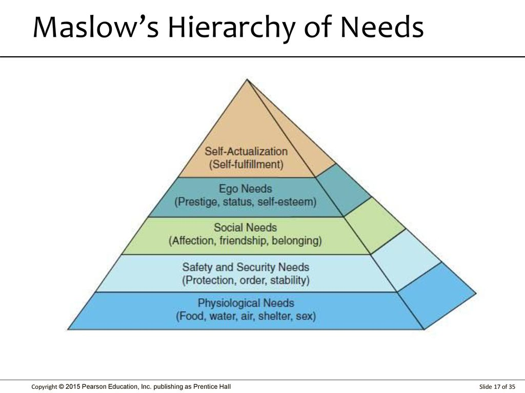 Higher and lower needs. What is the social role of the lower human needs