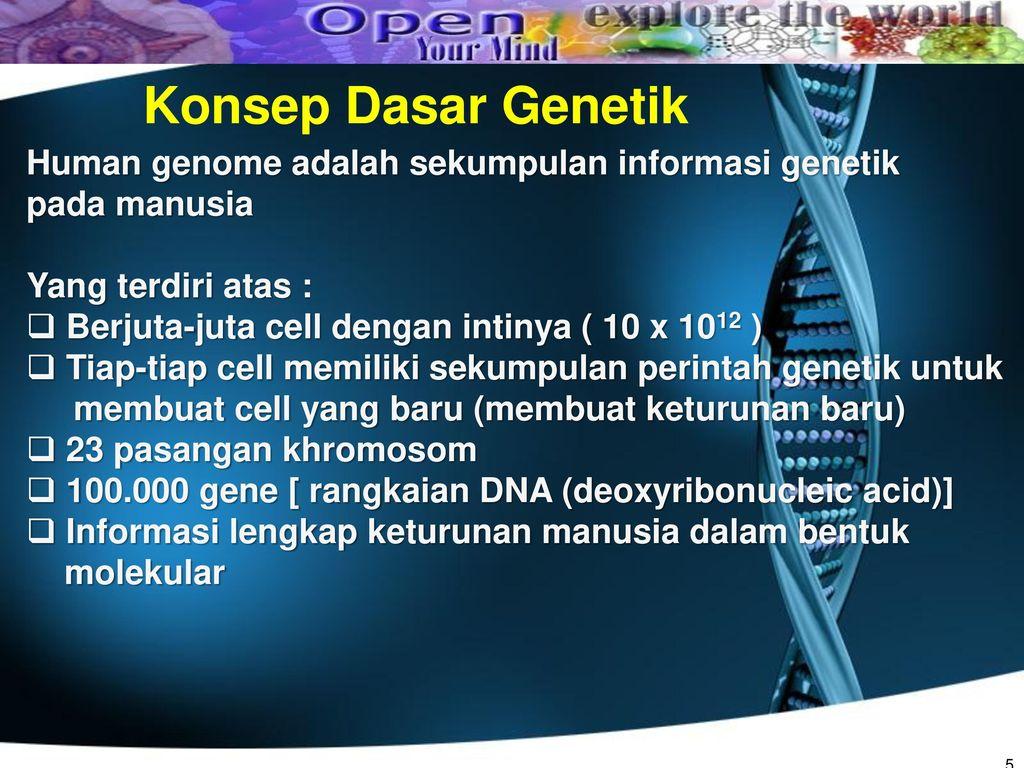Rekayasa genetika dan molekul kehidupan ppt download konsep dasar genetik human genome adalah sekumpulan informasi genetik malvernweather Image collections