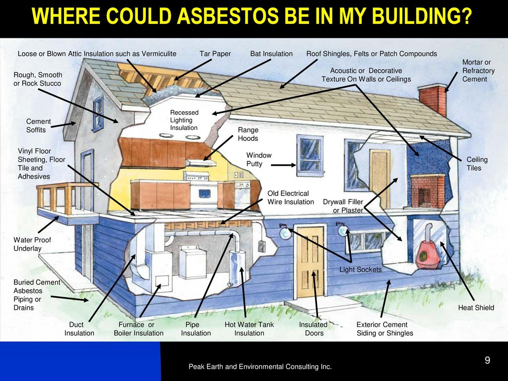 School District No  20 Asbestos Awareness Seminar - ppt download