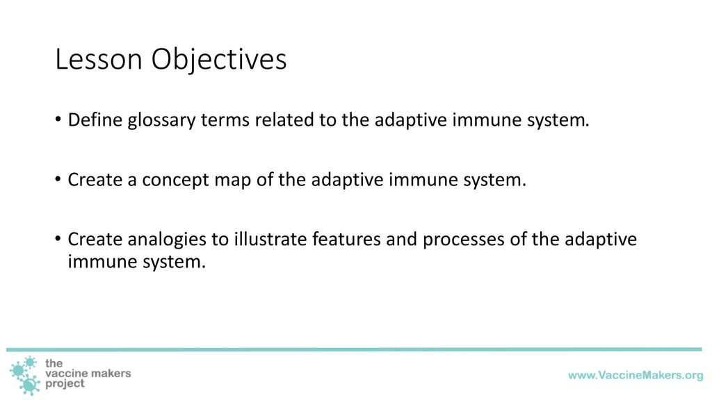 Adaptive Immunity Concept Map.The Adaptive Immune System Ppt Download