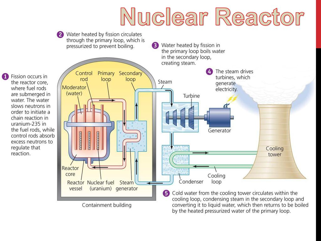 Case Study Swedens Search For Alternative Energy Ppt Download Nuclear Power Plant Diagram Pictures 8 Reactor
