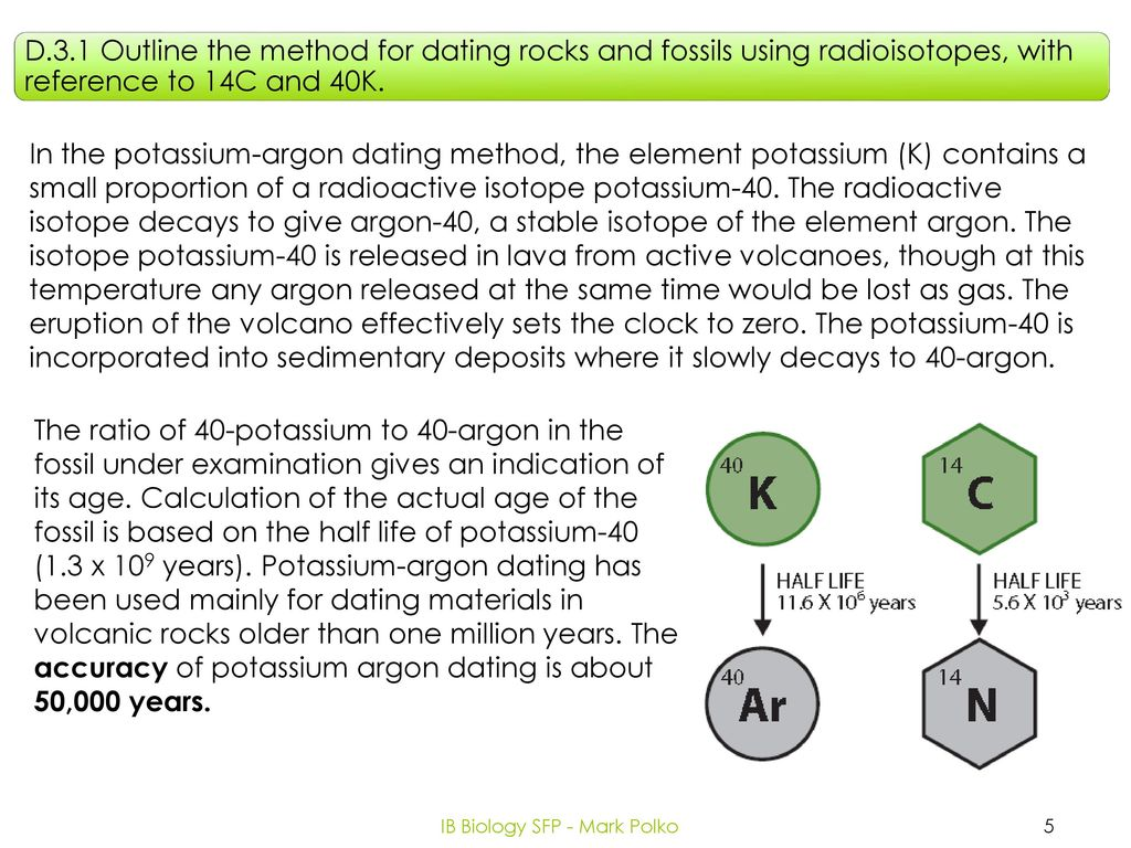 Potassium argon dating hominids evolution