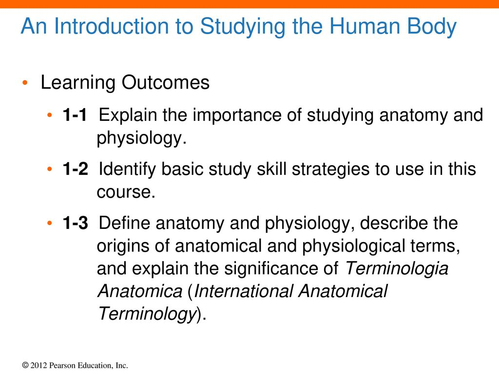 1 An Introduction to Anatomy and Physiology. - ppt download